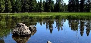 Vernal, Pools, Preserve, California, U0026, 39, S, Natural, Landscape