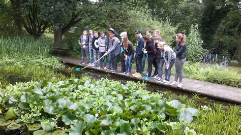 Botanischer Garten Bochum Preise by Neues Gymnasium Bochum Aktuell