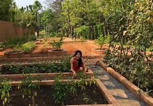 Thailand39s Herb Gardens Ani Phyo Wellness Raw Food