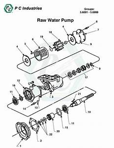 Raw Water Pump