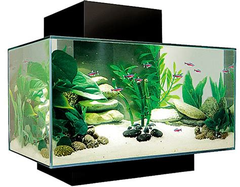 best aquarium in uk fish tank with and filter air fish free engine image for user manual