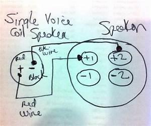 Speakon 4 Pole Wiring Question