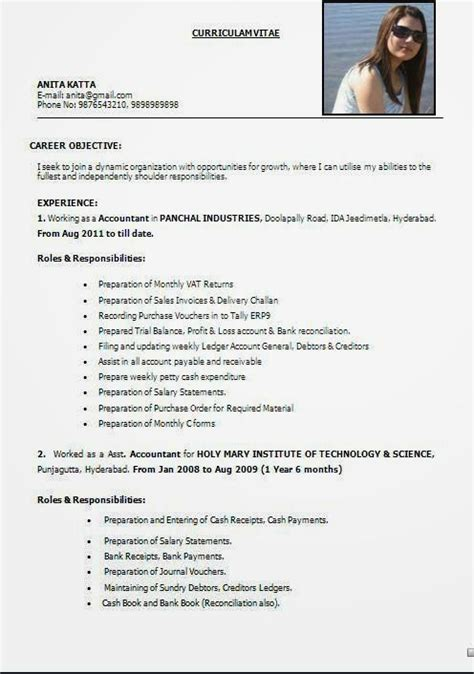 Experience Cv Format by Best It Cv Sle Template Exle Ofexcellent Curriculum