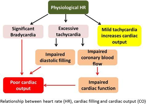 Newborn Diameter Diagram by Relationship Between Rate Hr Cardiac Filling And