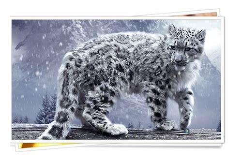 janelas de baixar do snow leopard retail