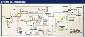 Examples Illustrate Sour Gas And Oil Facility Design