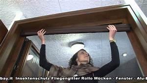 Fliegengitter Rollo Fenster : insektenschutz fliegengitter rollo m cken fenster alu bausatz nach masse youtube ~ A.2002-acura-tl-radio.info Haus und Dekorationen