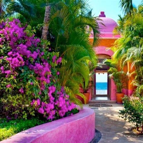 mexican landscaping mexican garden inspiration garden floral inspired mexico pinterest mexican garden