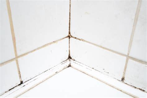 schimmel fliesenfugen entfernen schimmel entfernen mit hausmitteln 9 tipps tricks