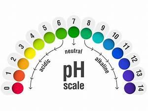 Vaginal pH balance: Normal levels and natural remedies  Ph