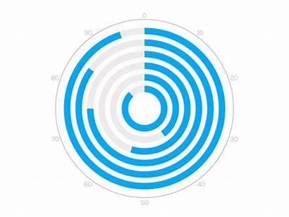 Circle Multiple Chart Animation Circles Dribbble Charts