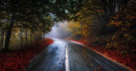 colorful road  fall  ultra hd wallpaper ololoshenka