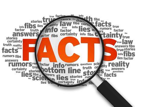 helping staff embrace fact based decisions plotline