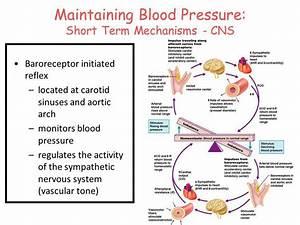 Pin On Nursing Mneumonics And Diagrams