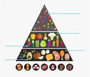 Keto Food Pyramid Pdf