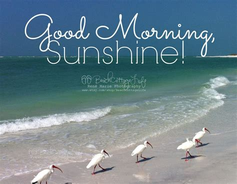 seaside morning mages google search good morning