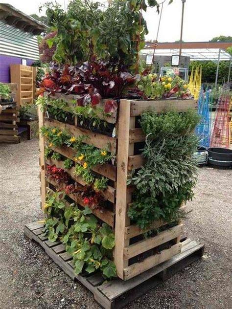 Vertical Vegetable Garden by Best 20 Vegetable Garden Design Ideas For Green Living