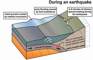 What Really Triggers Earthquakes  Here Are Some Of The