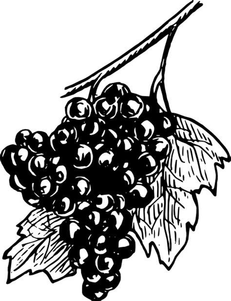 Grapes Clip Art at Clker.com - vector clip art online, royalty free & public domain