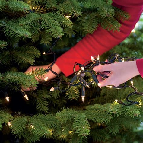 how to put lights on a christmas tree tips on how to put lights on a christmas tree