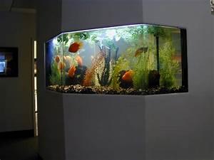 Beautiful Aquariums - Aquarium - RecipeApart