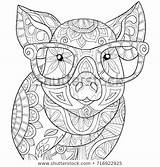 Coloring Adult Pages Mandala Royalty Shutterstock Adults Printable Animal Pig Colouring Books Sheets sketch template