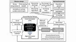 Flow Diagram Of The Key Processes And Interactions