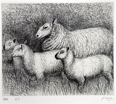 ideas  sheep drawing  pinterest   draw
