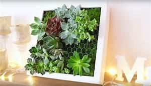 Succulentes Pas Cher : cadre v g tal avec plantes grasses ikea tableau de succulentes bidouilles ikea cadre ~ Melissatoandfro.com Idées de Décoration