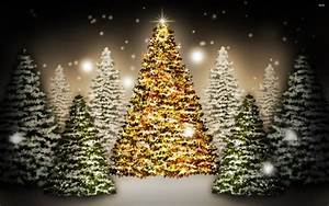 Christmas Trees 823867 - WallDevil
