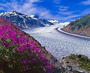 Free wallpaper background: Salmon Glacier Scenery British Columbia