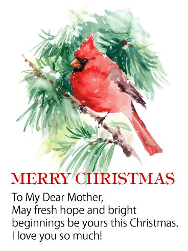 red cardinal christmas wishes card  mother birthday