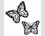 Butterfly Outline Monarch Drawing Clipart Butterflies Coloring Caterpillar Brush Pngio sketch template