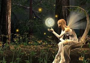 Fairy, Light, By, Lisa, Roy