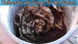 Kaffeesatz Als Dünger : kaffeesatz als d nger f r den garten pflanzen ~ Watch28wear.com Haus und Dekorationen