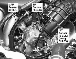 2003 Honda Cr V Engine Diagram 2010 Honda Pilot Engine