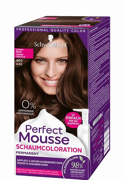 Perfect Schokobraun Mousse Schwarzkopf Noisette Haarfarbe Dam