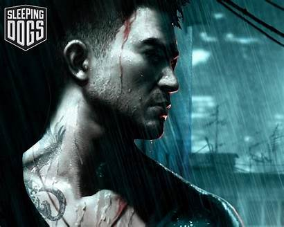 Sleeping Dogs Ps3 Wallpapers Triad Wars Games