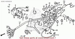 Honda Ft500 Ascot 1982 Usa Wire Harness