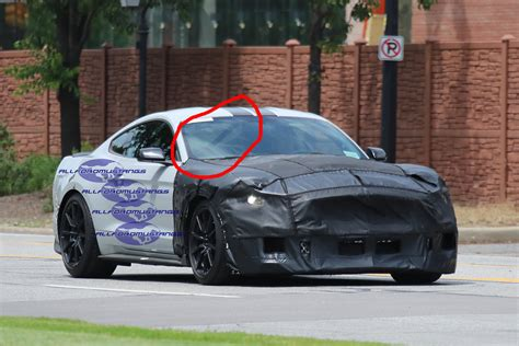 shelby gt spotted   cage allfordmustangs