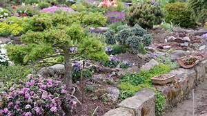 Kiesbeet Anlegen Bilder : bergwelt f r daheim die 17 beliebtesten steingartenpflanzen garten ~ Markanthonyermac.com Haus und Dekorationen