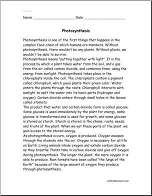 comprehension photosynthesis upper elem middle abcteach