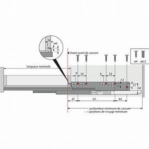 Coulisse Tiroir Sortie Totale : coulisses quadro v6 pour tiroir bois charge 50kg sortie ~ Dailycaller-alerts.com Idées de Décoration