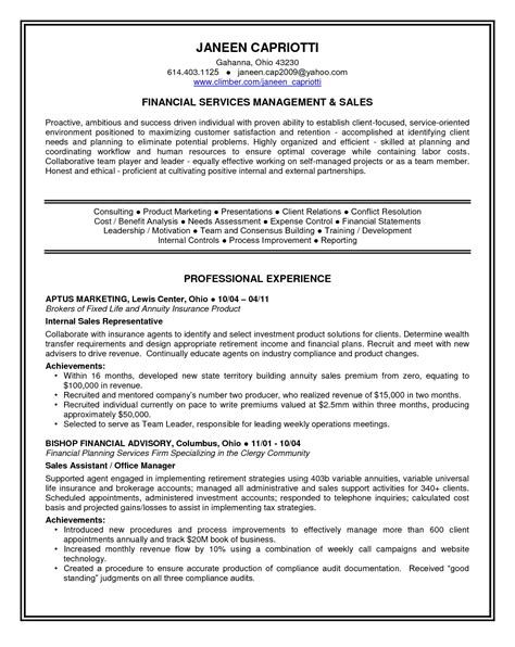 sle of resume personal statement personal statement resume template