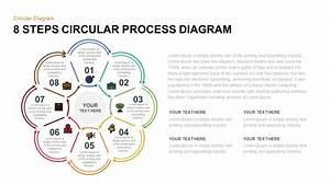 8 Step Circular Process Diagram Powerpoint Template  U0026 Keynote