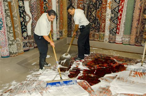 How To Shoo A Rug by Prevent And Kill Moths In Your Rugs Behnam Rugs