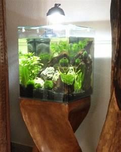 Holz Für Aquarium : aquastyle 24 eheim auf holz s ule design und lifestyle einrichtung f r aquarium nano von ~ A.2002-acura-tl-radio.info Haus und Dekorationen