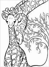 Giraffe Coloring Printable Giraffes Coloriage Colorare Girafe Mom Mandala Erwachsene Monkey Colorear Giraffa Adult Jirafas Disegni Mother Giraffen Bebe Adultos sketch template