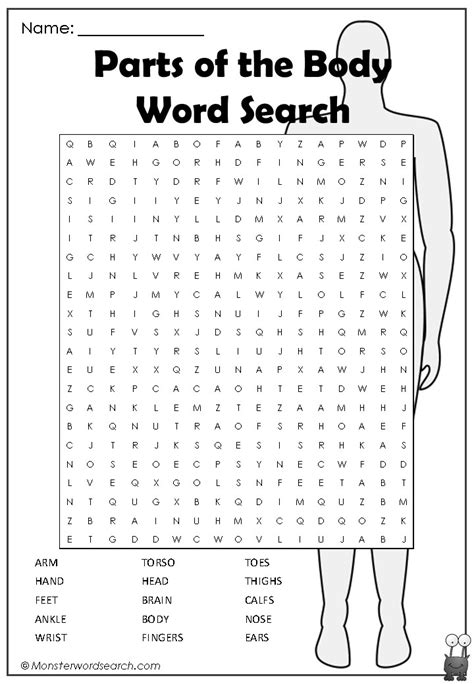 parts   body word search