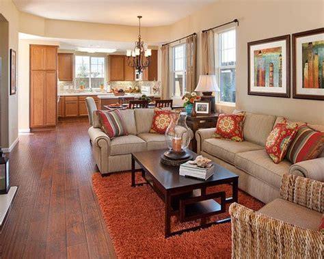 Living Room Burnt Orange Couch Design Pictures Remodel